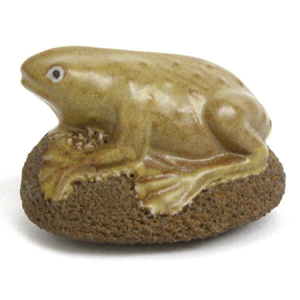 Scrubsteen Frog