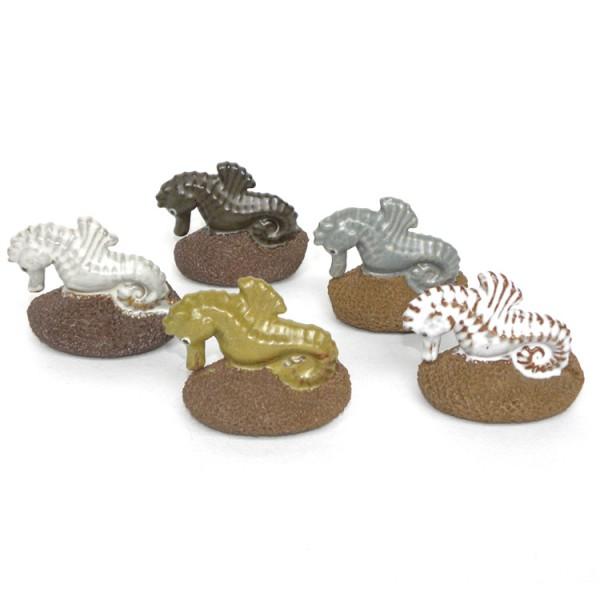 Scrubsteen Seahorse
